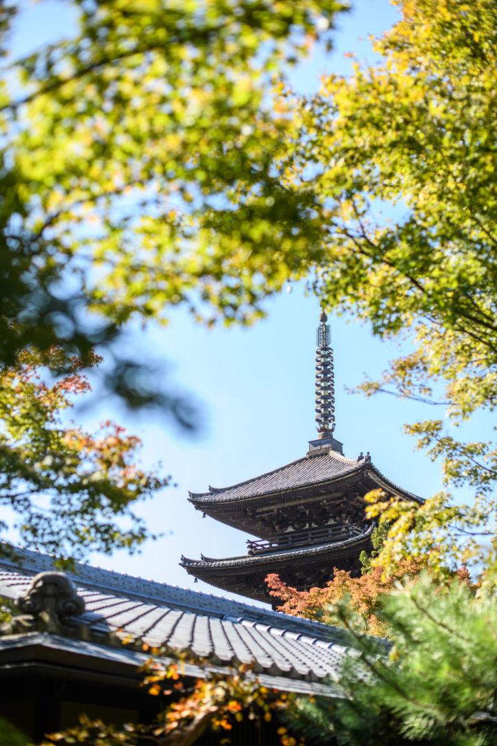 京都 結婚式場