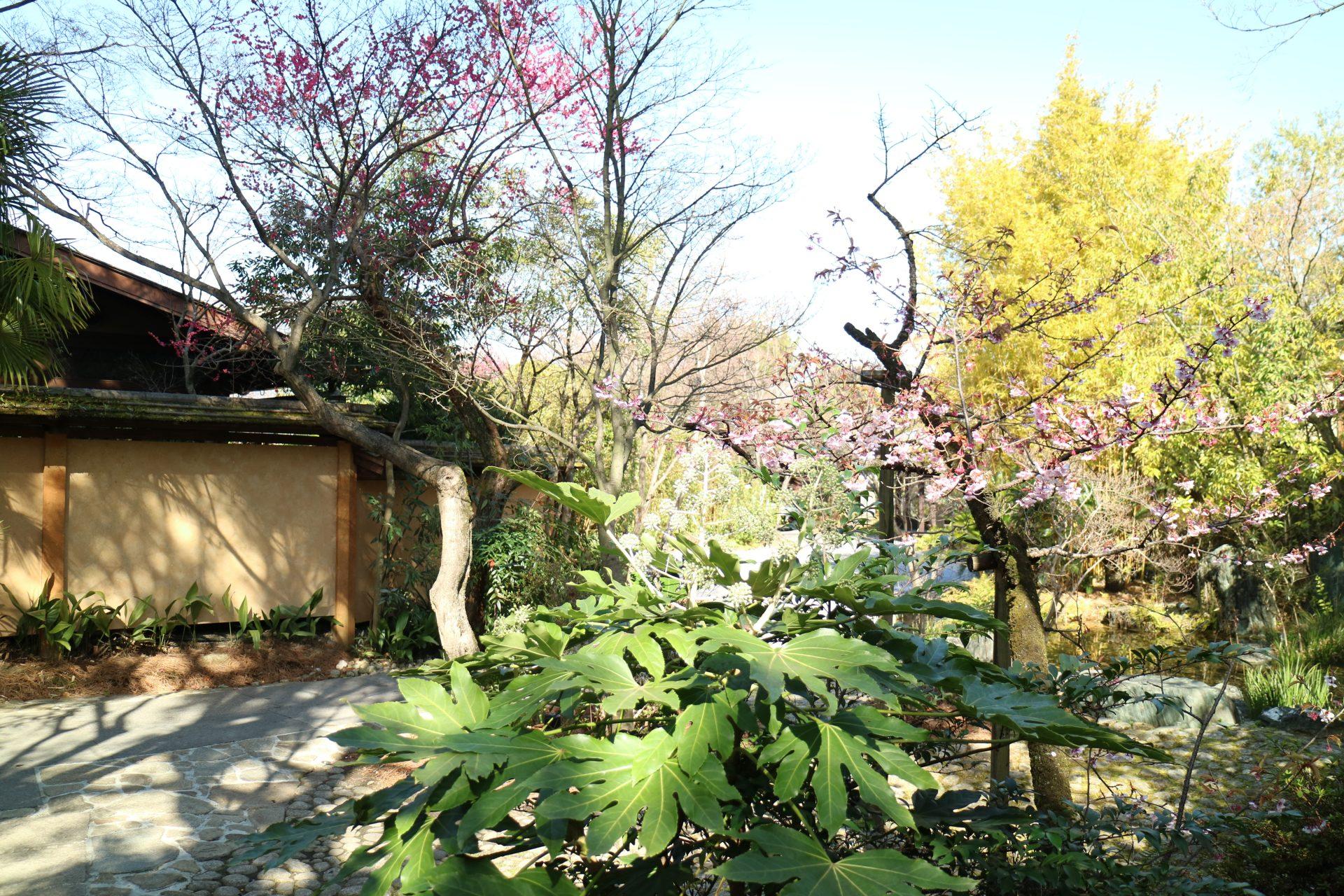 趣のある落ち着いた京都の結婚式会場THE SODOH HIGASHIYAMA KYOTO