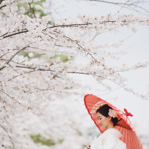 ザ・トリート・ドレッシングの上品な白無垢を着用された和モダンな京都の結婚式会場THE SODOH HIGASHIYAMAでの和装前撮り