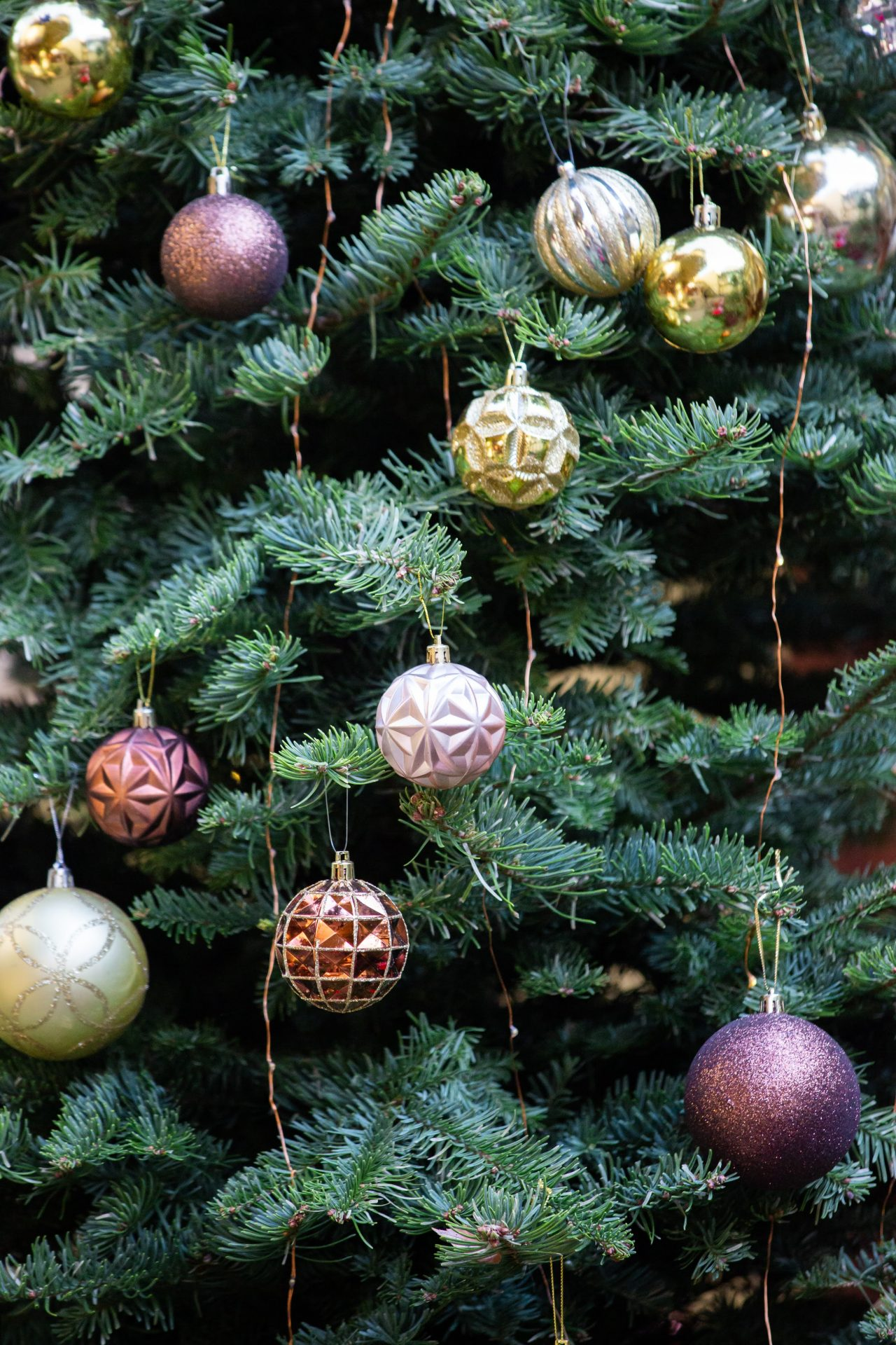 12月の冬のガーデンウェディングに合わせ、リストランテASOの会場の装飾もクリスマス使用になっております。