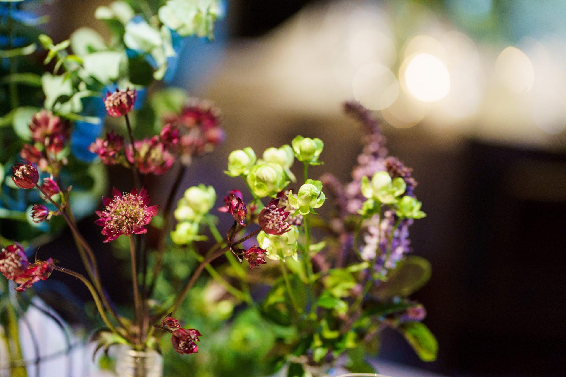 藤屋御本陳らしい紫の差し色が映えるナチュラルな装飾