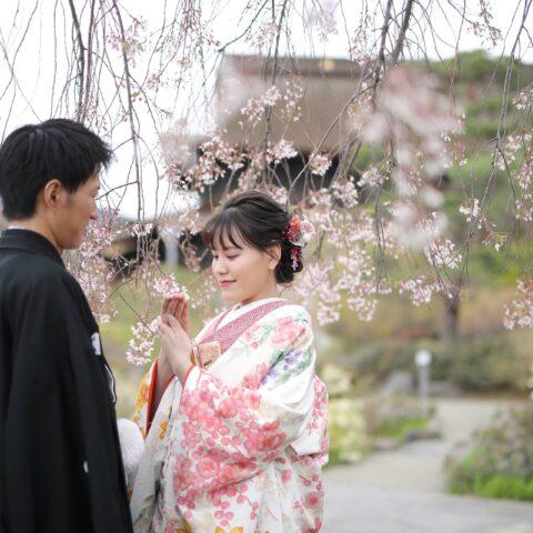 色打掛に合わせた赤色の掛下着物と桜の色合わせがモダンな前撮り写真