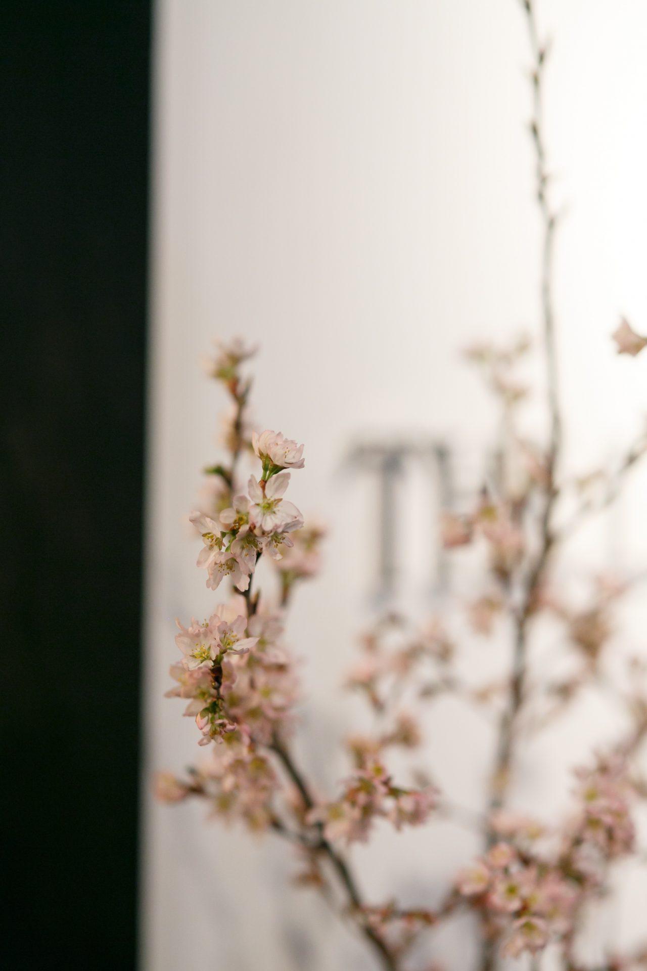 春分の日に相応しい桜をふんだんに使用したウェルカムスペース
